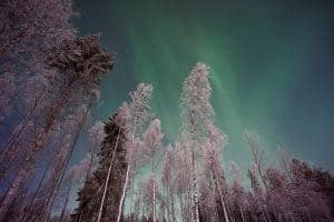 The Northern Lights from Lapland, Finland. Photo by Vincent Guth.
